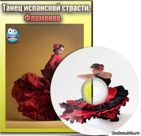 Скачать Танец испанской страсти. Фламенко (2012) DVDRip Бесплатно